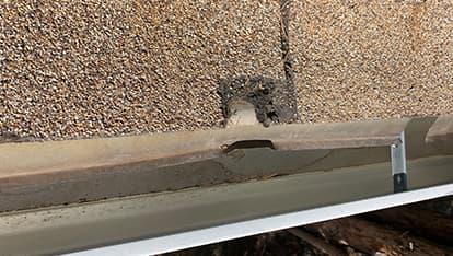 Hail damage roof inspection on Martin Luther King Blvd in Denver
